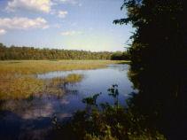 Wharton State Park